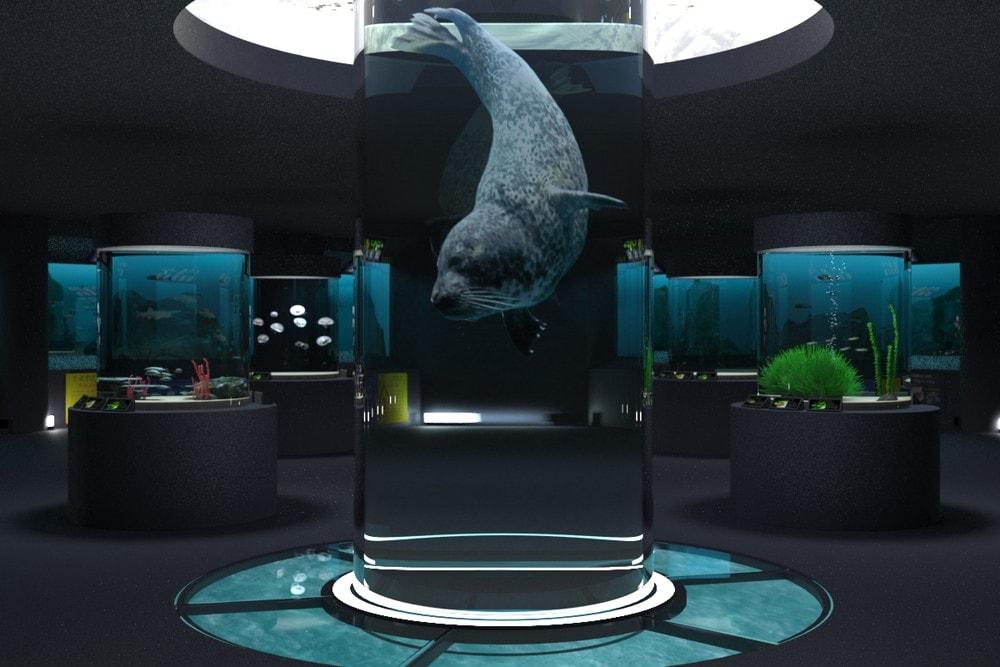 水族館の大型水槽に「高透過アクリルパイプ」を用いた事例 (1)